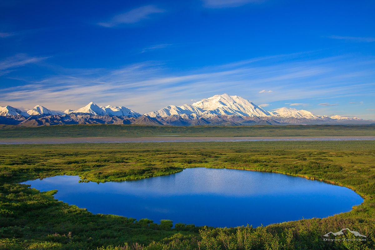 Alaskan photo tours activities and attractions in denali for Free land in alaska