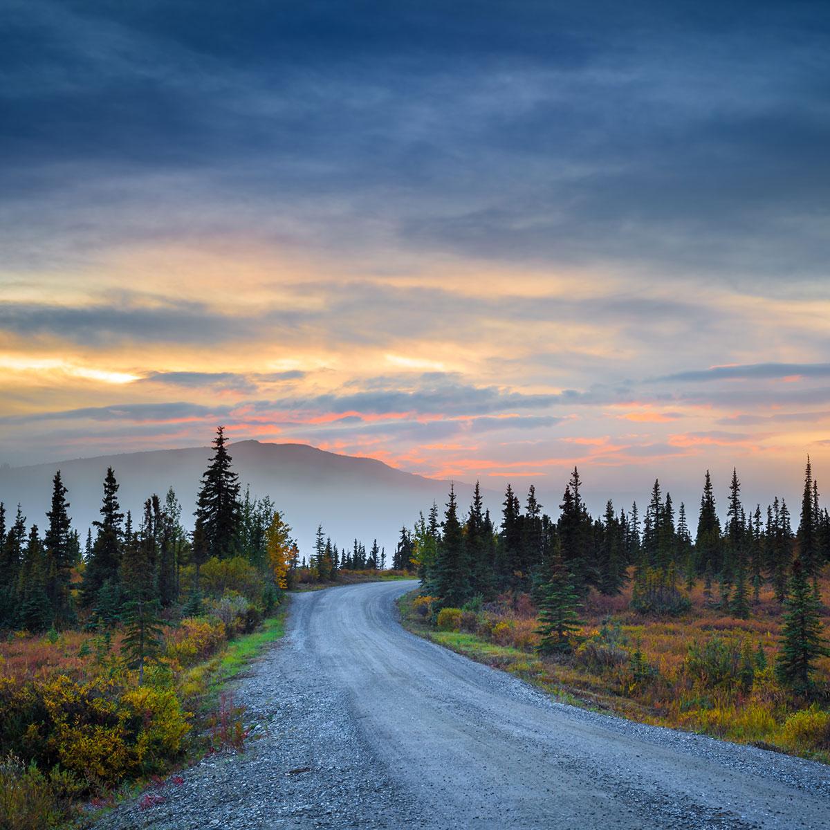 Road in Denali Country