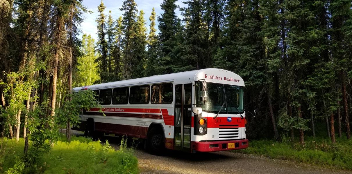 Denali tour bus